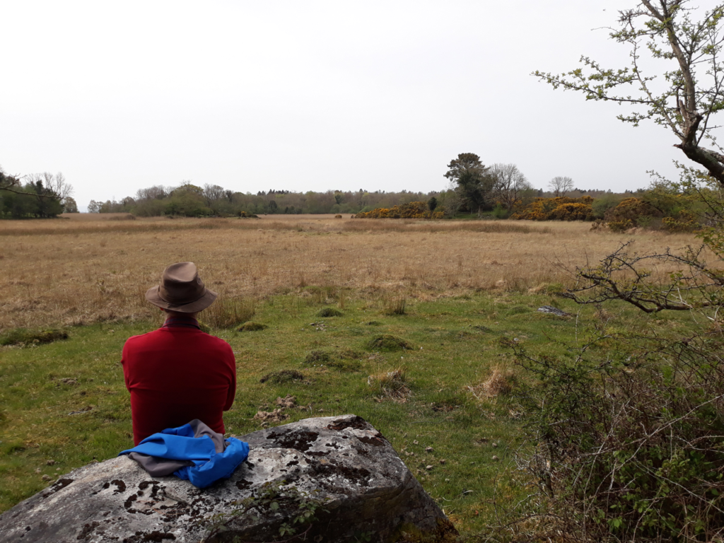 Man sitting and looking at a field
